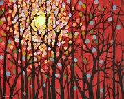 November Sun 12